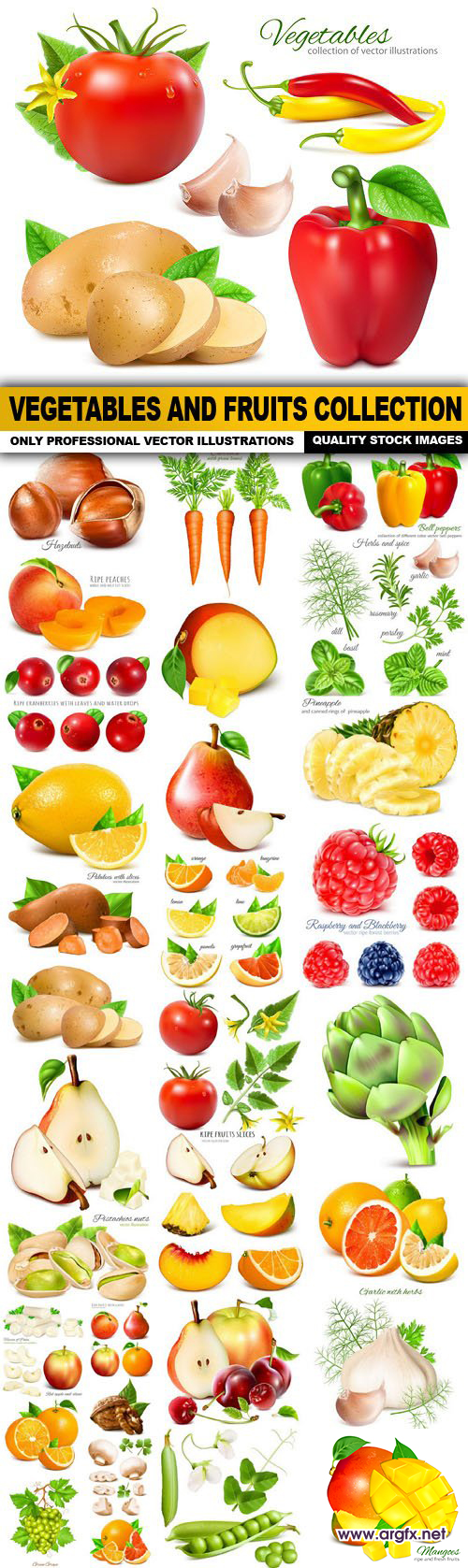 Vegetables And Fruits Collection - 35 Vector