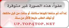 البوم محمد السالم انا البصمة 2017